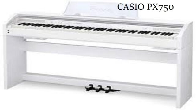 Top Best Casio PX750 BK 88-Key Touch Sensitive Privia Digital Piano in 2020