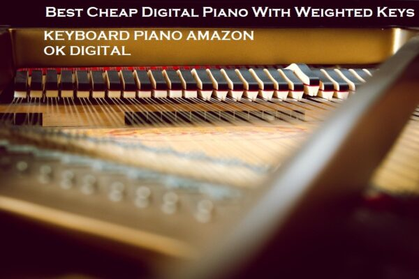 Top 14 Best Cheap Digital Piano With Weighted Keys From Amazon In 2020