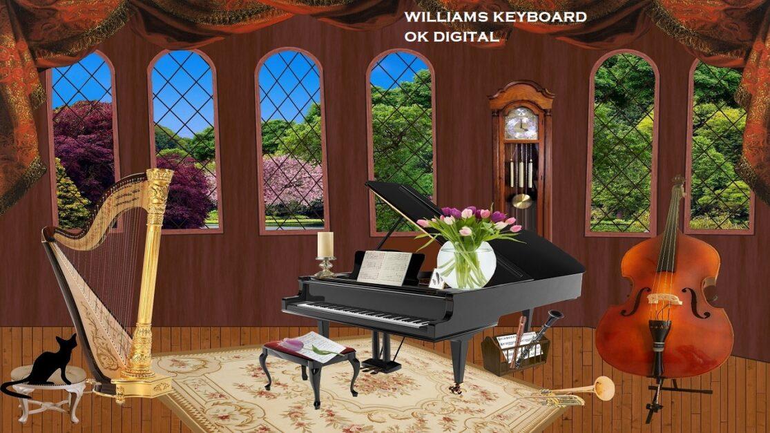 Top 4 Best Williams Digital Piano Reviews! Expert Says In 2020