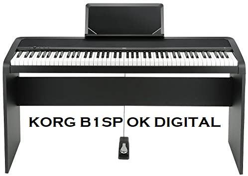 korg b1sp