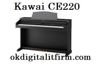 Kawai CE220