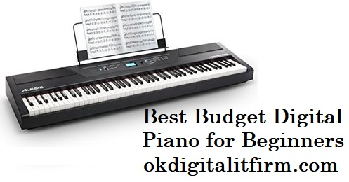 Best Budget Digital Piano for Beginners